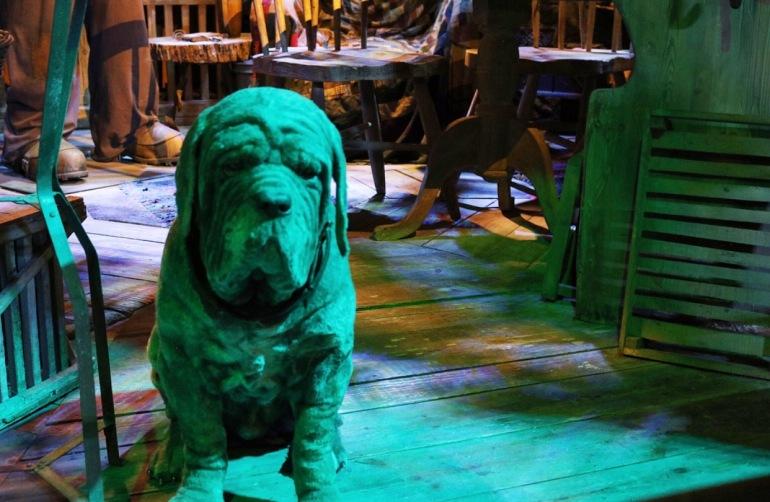 Fang - Hagrids Dog