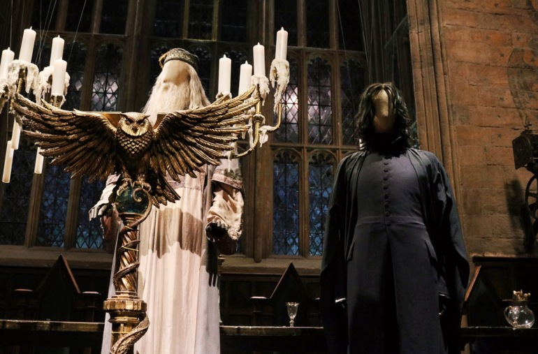 Dumbledore and Snape Costumes