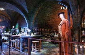 Potions Class Set & Slughorn costume