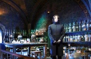Potion Set & Snape Costume